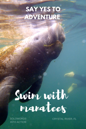 SoloWords into Action-Swim with Manatees